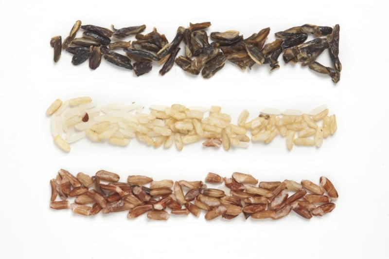 Råris är exempel på Långsamma kolhydrater