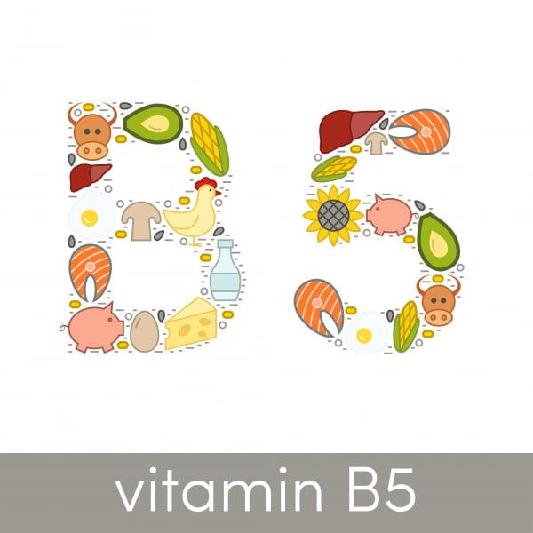 Vitamin B5 Pantotensyra