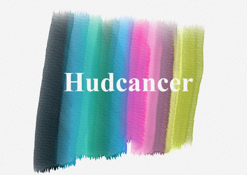 Hudcancer